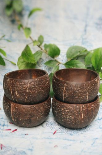 Coconut Bowl Pack Of 4
