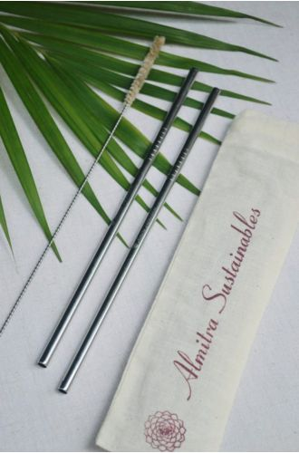 Stainless Steel Straw Straight Pack Of 2 With 1 Cleaner