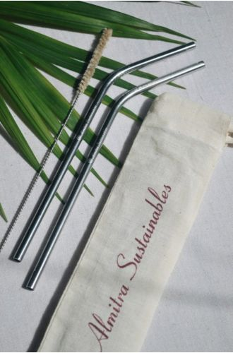 Stainless Steel Straw Bent Pack Of 2 With 1 Cleaner