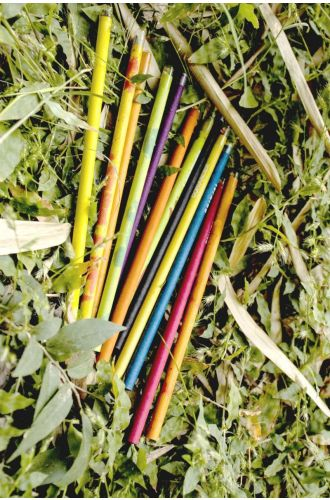 5 Plantable Pencils -100% Recycled Paper